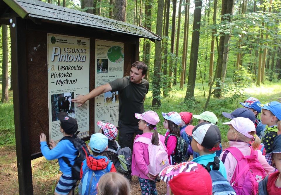 výuka lesní pedagogiky
